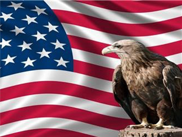 eagle in front of American flag