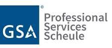GSA professional services scheule